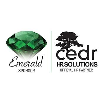 Logo for CEDR Solutions